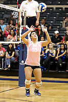 SAN ANTONIO , TX - OCTOBER 28, 2009: The University of the Incarnate Word Cardinals vs. the St. Mary's University Rattlers Women's Volleyball at Bill Greehey Arena on the campus of St. Mary's University. (Photo by Jeff Huehn).