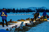 Teams rest on straw at the Finger Lake checkpoint as Jessie Royer runs through the checkpoint in the early morning hours on Monday, March 05, 2018 during the Iditarod Sled Dog Race<br /> <br /> Photo by Jeff Schultz/SchultzPhoto.com  (C) 2018  ALL RIGHTS RESERVED