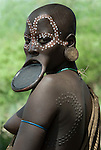 Young Woman with clay lip plate and face painted, showing ceremonial scars, Mursi Tribe, Mago National Park, Lower Omo Valley, Ethiopia, portrait, person, one, tribes, tribal, indigenous, peoples, Southern, ethnic, rural, local, traditional, culture, primitive, tattoo.Africa....