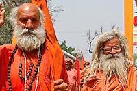 Sadhu join kumbh Mela haridwar india