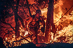 1990 Cottonwood Fire