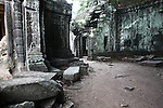 The ruins of Ta Prohm at Angkor Thom, Cambodia. June 9, 2013.