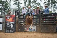 SEBRA - Windsor, VA - 9.17.2017 - Bulls & Action