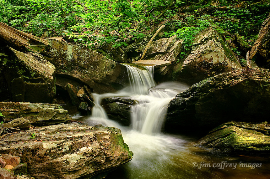 A small idyllic cascade in Ganoga Glen in Ricketts Glen State Park in northeastern Pennsylvania