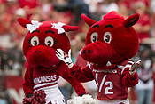 Razorback Cheer Team 2018