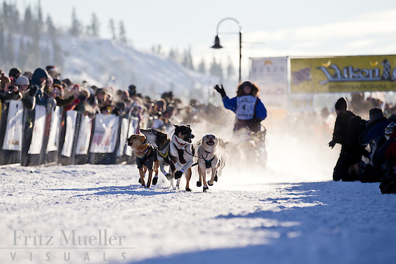 Start of the Yukon Quest International Sled Dog Race in Whitehorse, Yukon.