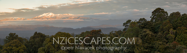 Coastal sunset over Okarito native forest with Mount Adams of Southern Alps in background, Westland Tai Poutini National Park, UNESCO World Heritage Area, West Coast, New Zealand, NZ