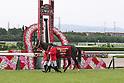 Horse Racing: Takarazuka Kinen