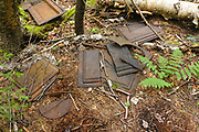 Stove pieces, protected artifacts, at an old dwelling site in the Carrigain Brook drainage in Livermore, New Hampshire. This camp is possibly a logging camp of the Sawyer River Railroad (1877-1928). Artifacts, such as these, are protected, and the removal of historical artifacts from federal lands without a permit is a violation of federal law.