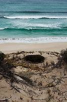 The dunes open up to wild beach, Kangaroo Island, South Australia.