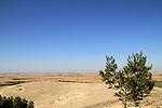 Israel, Shephelah, Hurvat Abu Hof in Lahav forest