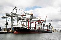 Nederland  Rotterdam - 2017. Containers worden met kranen op een schip geplaatst.  Foto Berlinda van Dam / Hollandse Hoogte