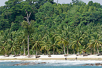 Lance's Left area, Mentawai Islands, Indonesia