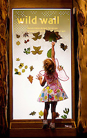 "Visitors to Charlotte's Discovery Place museum check out World Alive, the museum's exhibit with an aquarium, a rainforest, a biodiversity gallery and two hands-on labs created to inspire inquiry-based  learning. Here, a child is sticking leaves to the ""wild wall,"" which uses air suction to let kids design. Discovery Place, Charlotte NC's interactive children's museum, unveiled its interactive exhibits and hands-on activities in June 2010. Renovations of the popular family museum were made possible by the City of Charlotte, the Arts and Science Council and private donations. Discovery Place museum has age-appropriate exhibits for kids of all ages."