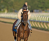 Kensei preps for the 2009 Travers Stakes at Saratoga on Aug. 27, 2009.