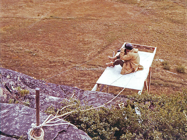 Ron Austing sitting on an unfinished Peregrine Falcon blind in Bathurst Inlet; Nunavut Territory; Canada
