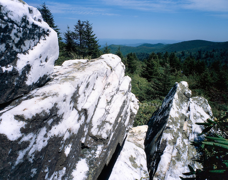 Quartz outcrop   NORTH CAROLINA , Shining Rock Wilderness