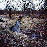 The forested habitat for hunting white tail deer near Superior, Nebraska, Thursday, December 1, 2011. ..Photo by Matt Nager