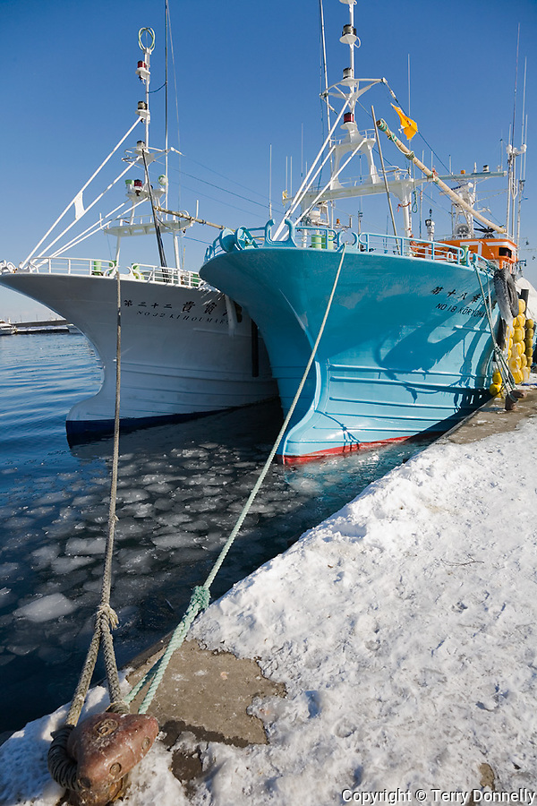 Shiretoko Peninsula, Hokkaido Island, Japan<br /> Bows of ice fishing boats docked at Rausau village harbor