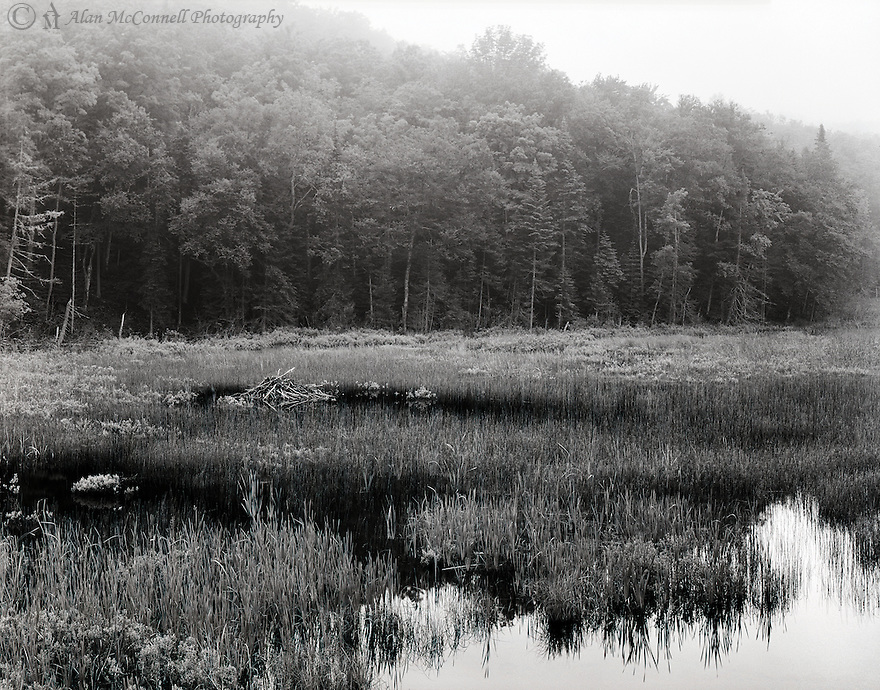 """Beaver Lodge""<br />