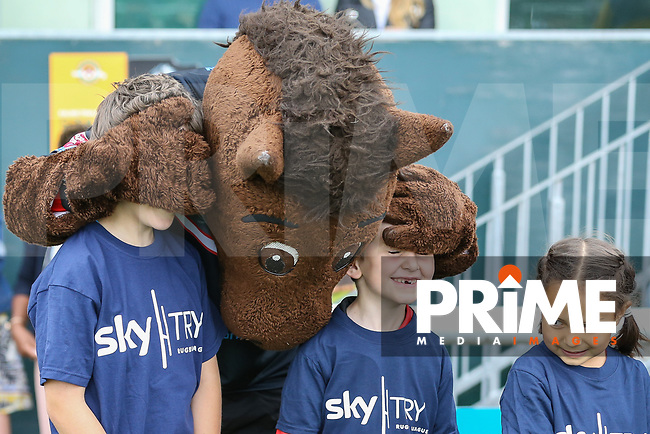 Mascots ahead of the Kingstone Press Championship match between London Broncos and Featherstone Rovers at Castle Bar , West Ealing , England  on 25 June 2017. Photo by David Horn.