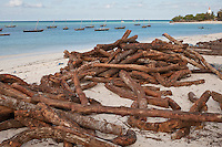 Nungwi, Zanzibar, Tanzania.  Dhow Construction.  Wood waiting on beach to be used in dhow construction.