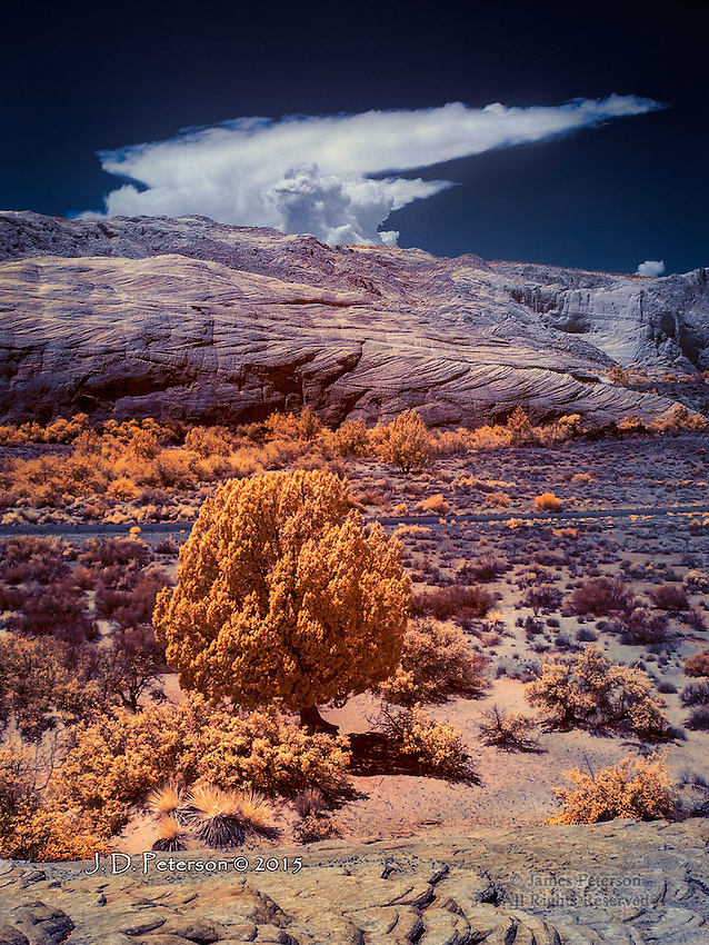 Anvil Cloud (Developing Thunderhead) over Snow Canyon, Utah (Infrared)