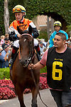DEL MAR, CA  SEPTEMBER 3: #6 Summering, ridden by Drayden Van Dyke, in the paddock of the Del Mar Juvenile Fillies Turf on September 3, 2018, at Del Mar Thoroughbred Club in Del Mar, CA. (Photo by Casey Phillips/Eclipse Sportswire/Getty Images)