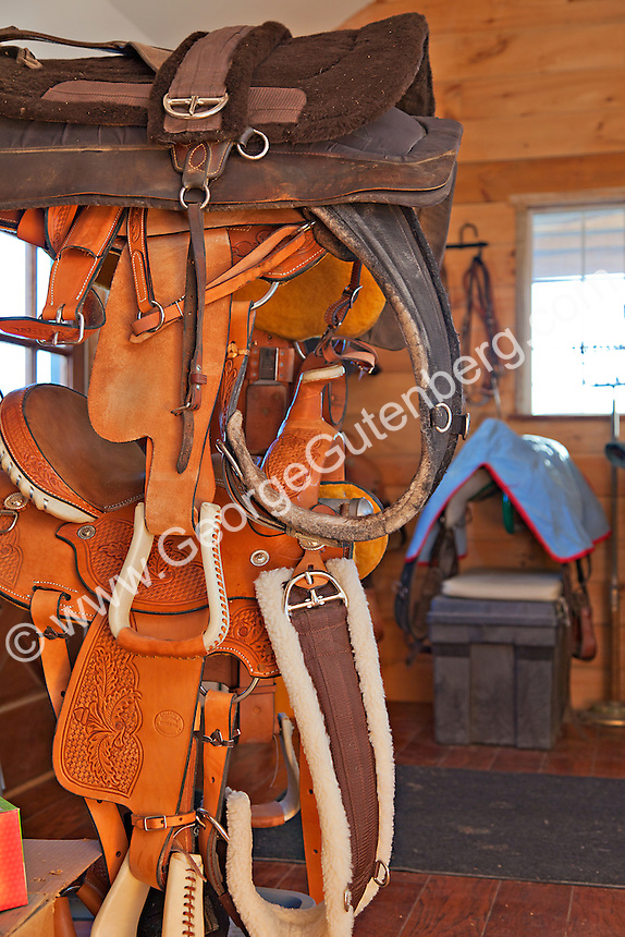 Horse saddles and tack