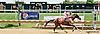 Señora de Lujan winning at Delaware Park on 7/17/14