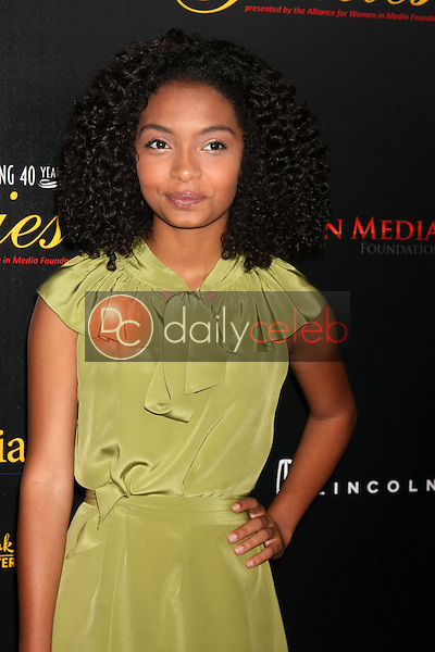 Yara Shahida<br />