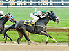 Diosa Del Sol winning at Delaware Park on 5/14/12