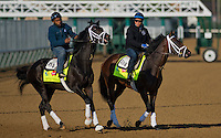 Revoluntionary and Overanalyze, trained by Todd Pletcher, take to the track during morning workouts for the Kentucky Derby at Churchill Downs in Louisville, Kentucky on April 30, 2013.