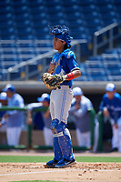 Toronto Blue Jays catcher Javier D'Orazio (11) during an Instructional League game against the Philadelphia Phillies on September 17, 2019 at Spectrum Field in Clearwater, Florida.  (Mike Janes/Four Seam Images)