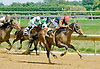 Stereo in Motion winning at Delware Park on 7/30/12