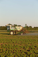29.5.2020  Spraying sugar beet in the late evening to avoid the heat of the day <br /> ©Tim Scrivener Photographer 07850 303986<br />      ....Covering Agriculture In The UK.
