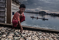 A Bajau child walks past rows of freshly caught parrotfish in Kabalutan village, Indonesia . The fish are salted and left out in the sun to dry as a way to preserve them. The waters around Kabalutan village have been heavily overfished in recent years. (Photo: Aurélie Marrier d'Unienville)