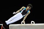 .Jamie Lewis British Gymnastics Championships. Mens u14 - u16 .2015Liverpool Echo Arena.