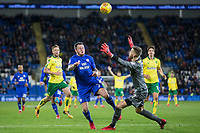 Lee Tomlin of Cardiff City collides with Angus Gunn of Norwich City and a penalty is given during the Sky Bet Championship match between Cardiff City and Norwich City at the Cardiff City Stadium, Cardiff, Wales on 1 December 2017. Photo by Mark  Hawkins / PRiME Media Images.