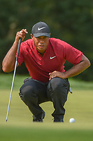 Tiger Woods (USA) looks over his putt on 9 during 4th round of the 100th PGA Championship at Bellerive Country Club, St. Louis, Missouri. 8/12/2018.<br /> Picture: Golffile | Ken Murray<br /> <br /> All photo usage must carry mandatory copyright credit (&copy; Golffile | Ken Murray)