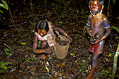 A-Ukre village, Brazil. Kayapo women and children collecting Brazil nuts in the forest; red and black body paint; Xingu.