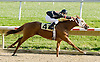 Miss Goldburg winning at Delaware Park on 11/1/11