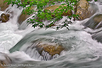 Little Pigeon River in motion, Greenbrier, Great Smoky Mountains National Park, Tennessee