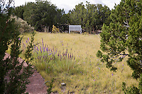 Bench by naturalistic Blue grama grass (Bouteloua gracilis) lawn with Liatris wildflowers in New Mexico short grass meadow garden; design by Judith Phillips