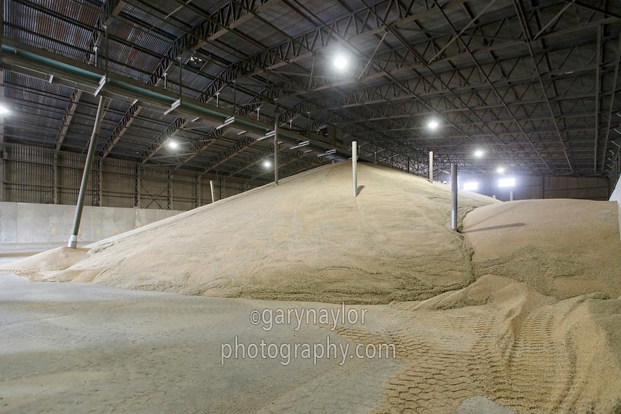 Wheat in farm store - Suffolk, August