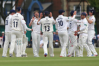 Jamie Porter of Essex is congratulated by his team mates after taking the wicket of Kumar Sangakkara during Surrey CCC vs Essex CCC, Specsavers County Championship Division 1 Cricket at Guildford CC, The Sports Ground on 9th June 2017
