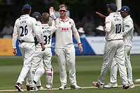 Simon Harmer of Essex celebrates with his team mates after taking the wicket of Tom Kohler-Cadmore during Essex CCC vs Yorkshire CCC, Specsavers County Championship Division 1 Cricket at The Cloudfm County Ground on 7th July 2019