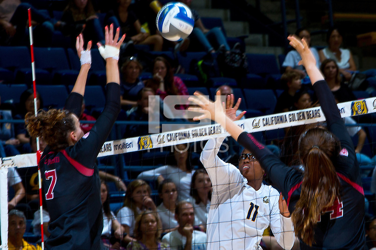 Berkeley, CA, September 20, 2016- Cal Berkeley Women's Volleyball faces Stanford Women's Volleyball at Haas Pavilion.