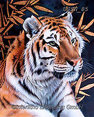 Sandi, REALISTIC ANIMALS, REALISTISCHE TIERE, ANIMALES REALISTICOS, paintings+++++,USSN85,#a#, EVERYDAY ,tiger,tigers, ,puzzles