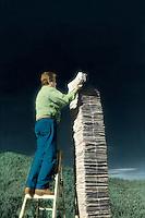 Recycling, man on ladder stacking newspapers